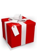 Emballage cadeau : Une pochette cadeau et un noeud raphia assorti.